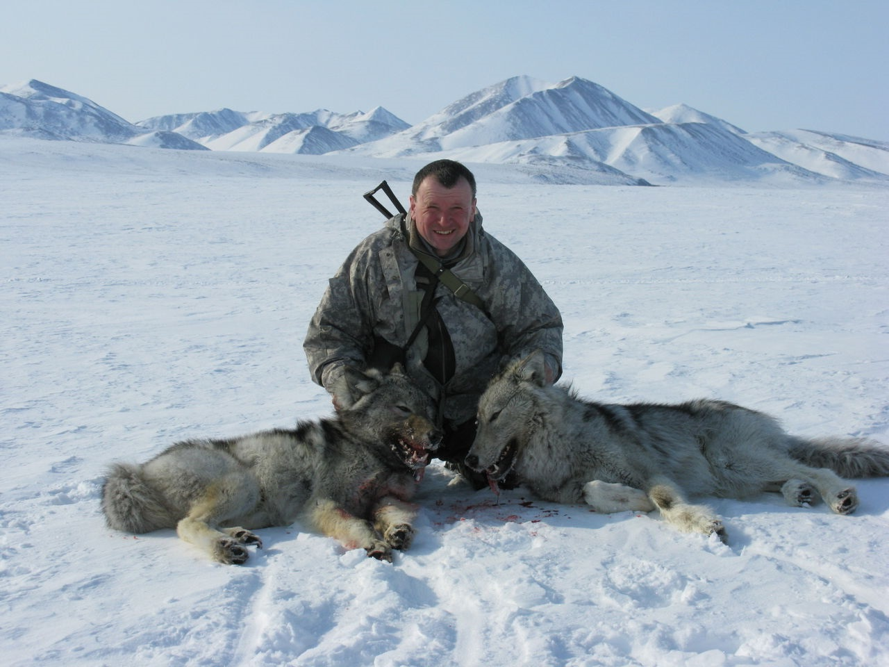 Охота на гуся - Охота и рыбалка в России и за рубежом