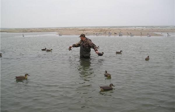 Охота с чучелами
