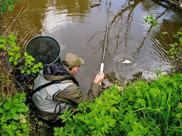 Рыбалка на карася весной на поплавок видео