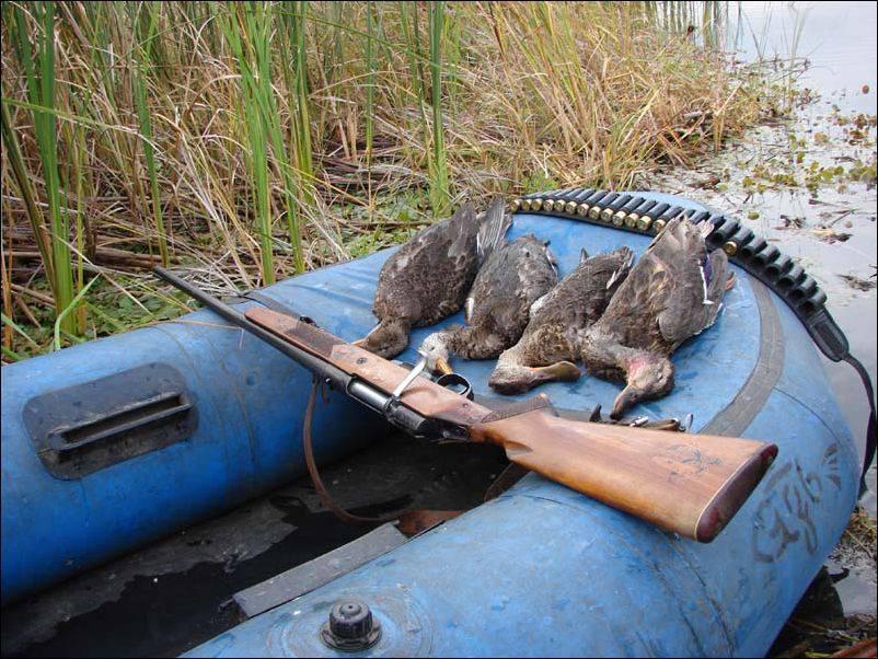 Организация охотничьего промысла