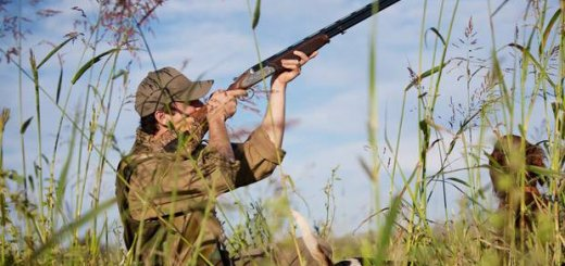 Охотничье хозяйства Азербайджана