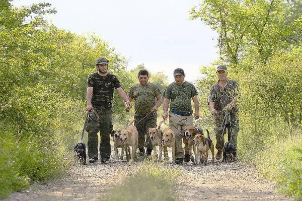 Охотничье хозяйство Грузии