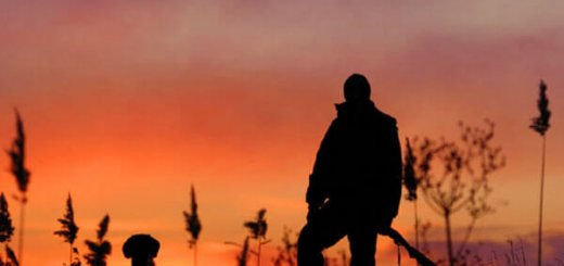 Любительская охота