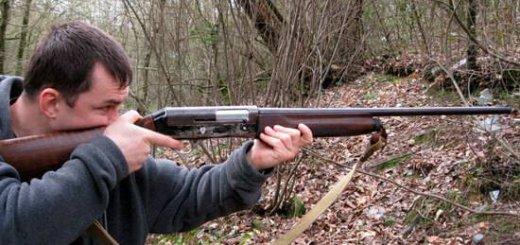 Прикладистость ружья