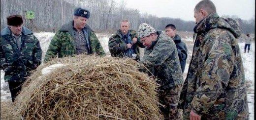 Проблемы охотхозяйств