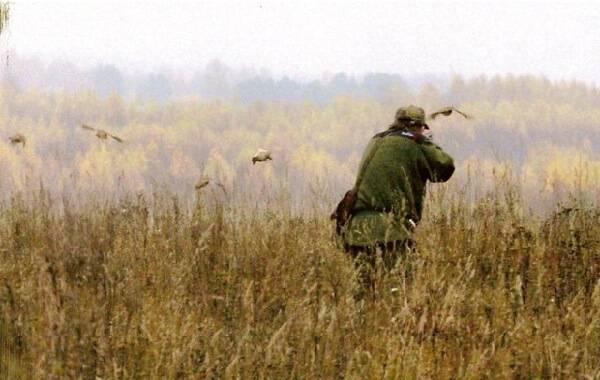 Стрельба на охоте