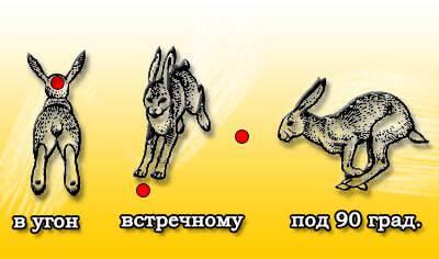 Упреждение при стрельбе по зайцу