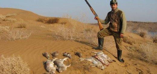 Алмалыкские охотники