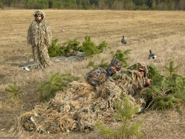 Охота в поле на гусей