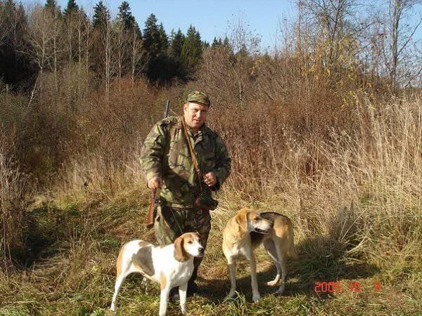 Охота с гончими