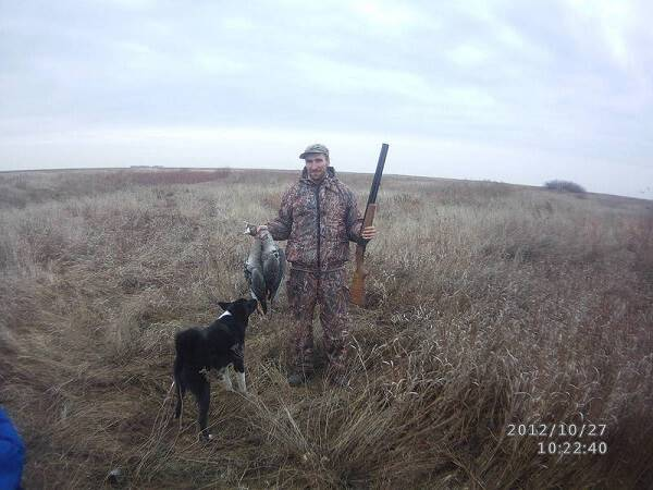 Охота в степи