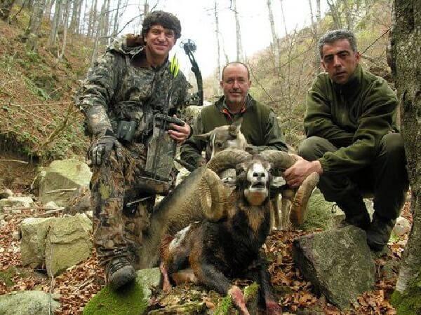 Охота в Венгрии