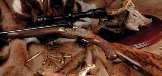 Оружие для охоты