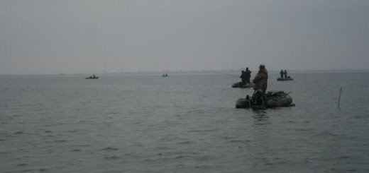 Рыбалка на Ахтарском лимане