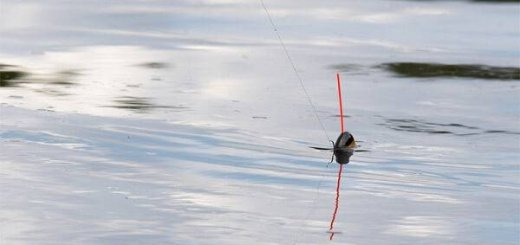 Поплавок рыболовный