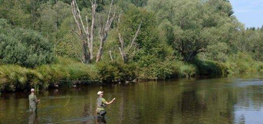 Рыбалка в Чехии