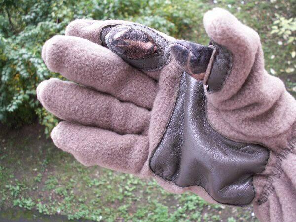Перчатки пользу кого охоты
