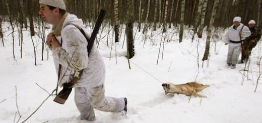 Охота в Чернобыле