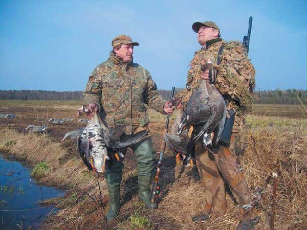 Охота в Белоруссии на гуся