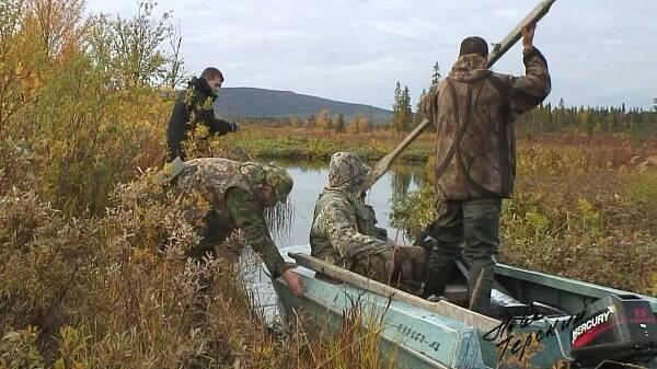 Охота на нырков