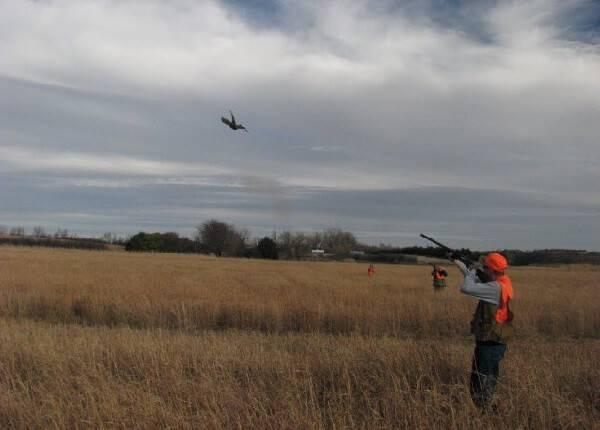 Охота на птицу