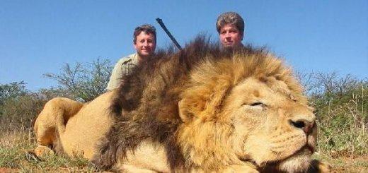 Охота в ЮАР