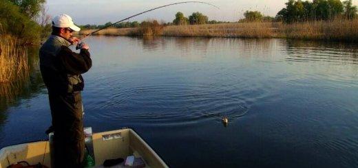 Рыбалка в Венгрии