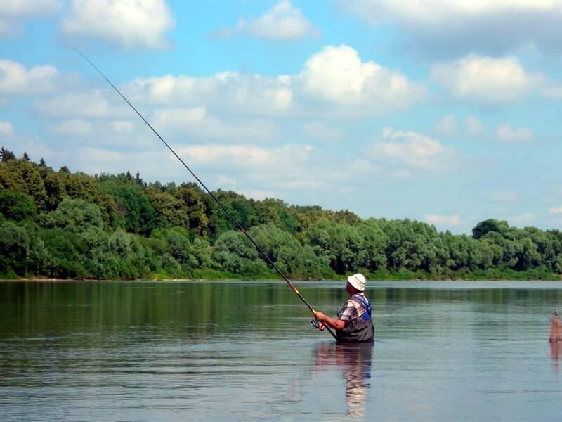 ловить рыбу психология