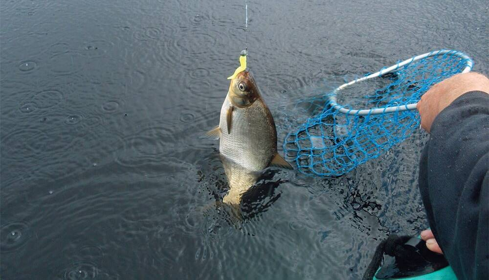 на что ловят рыбу в апреле
