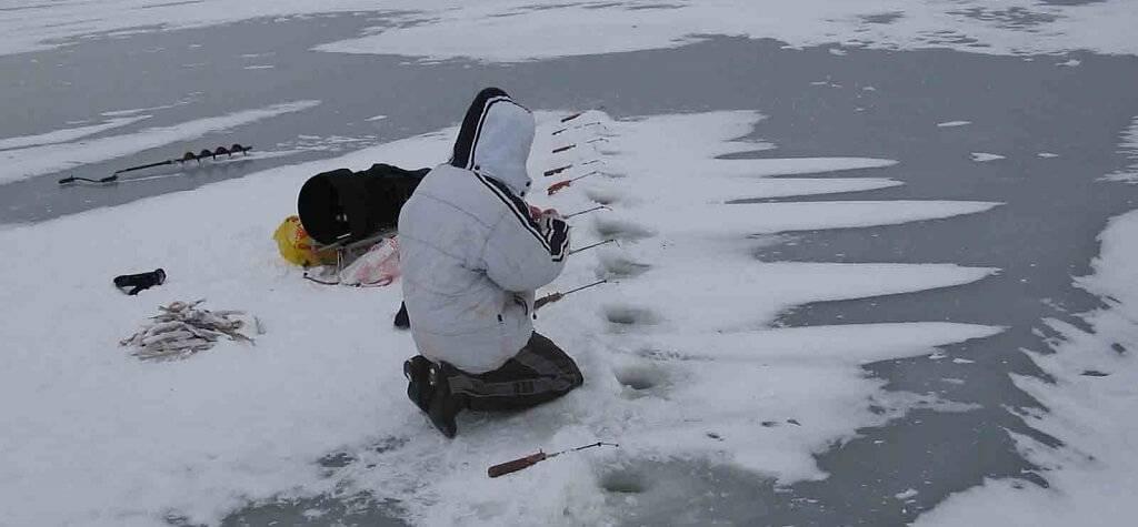 Ловля окуня зимой на Ладоге