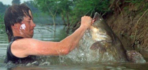 Стресс рыб