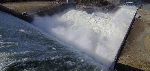 Рыба и гидроэнергетика