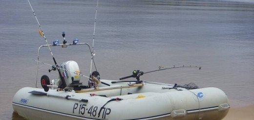 Выбор лодочного мотора для троллинга