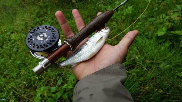 Рыболовные контракты