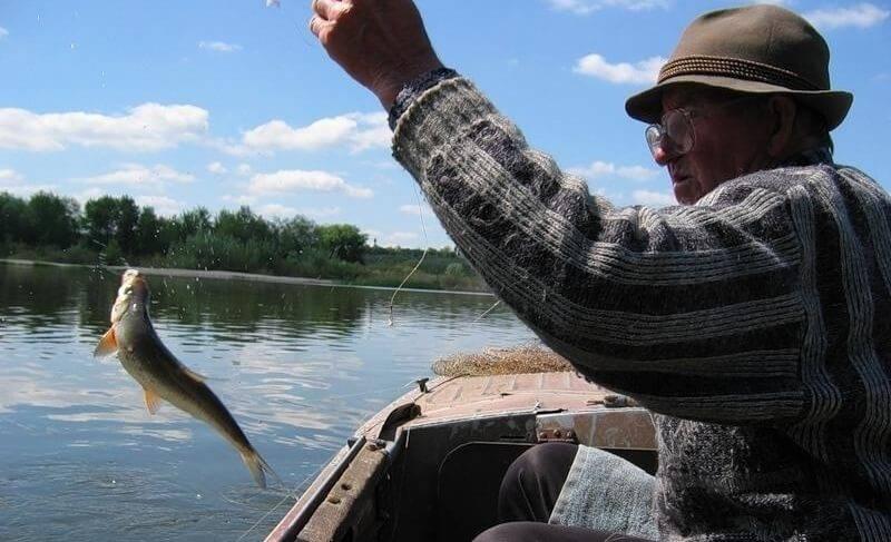 рыбалка на дону на рыбца на