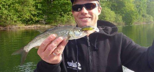 Рыбалка в Польше на озере Пясечно