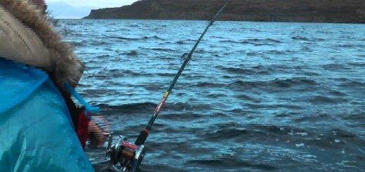 Рыбалка на Кольском заливе