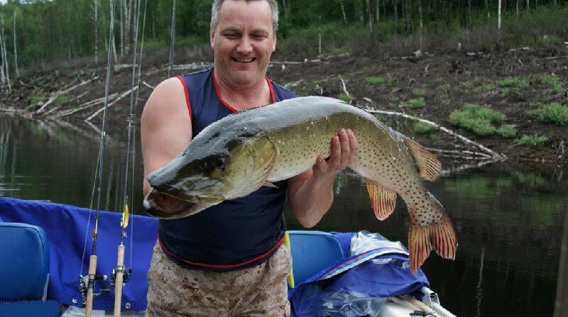 Рыбалка на р. амур