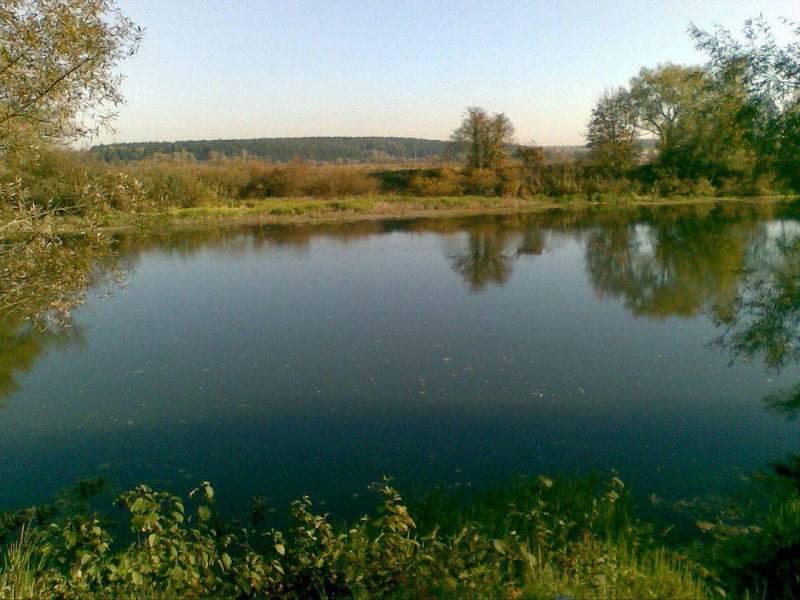 Рыбалка на реке Протва