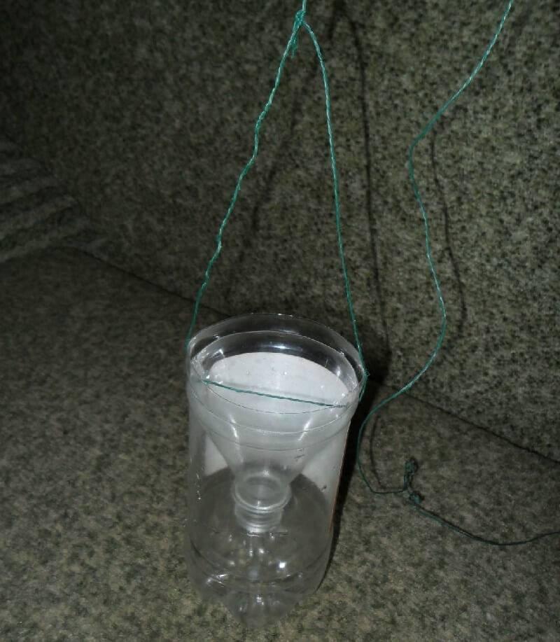 Ловушка из пластиковой бутылки готова