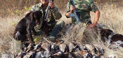 Охота в Астраханской области