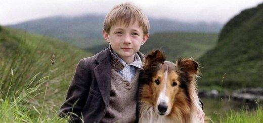 Собака для семьи с детьми