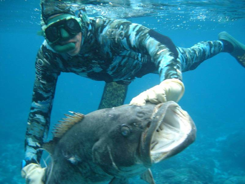 Как уберечь себя от неприятностей на подводной охоте