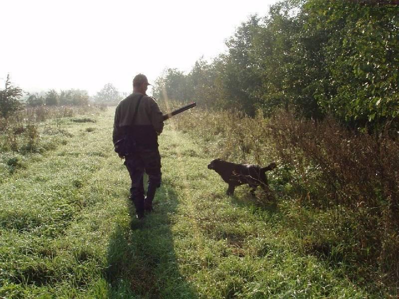 Как уберечь себя от неприятностей на охоте