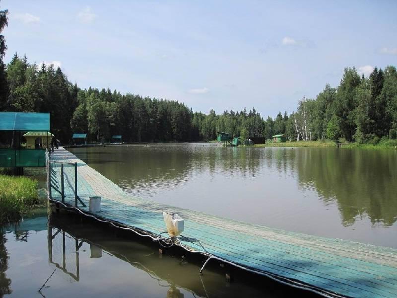 Рыбалка на платном водоёме