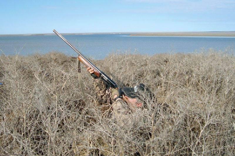 Неподвижная охота на птиц