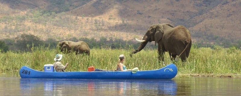 Путешествие по Замбези