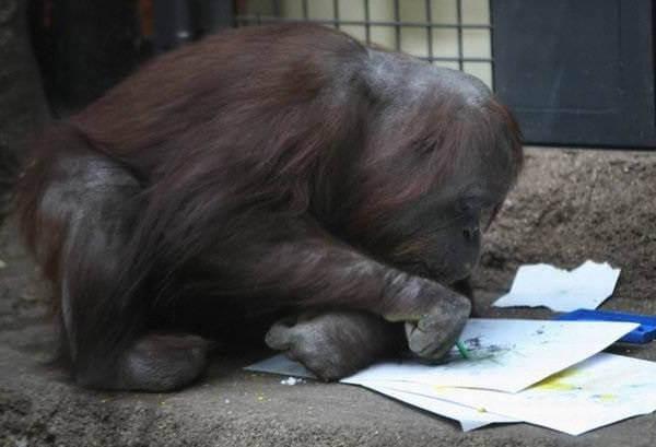 Рисующая обезьяна