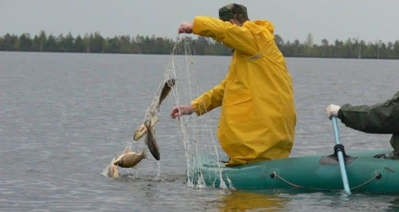 как ловить рыбу в небольших водоемах