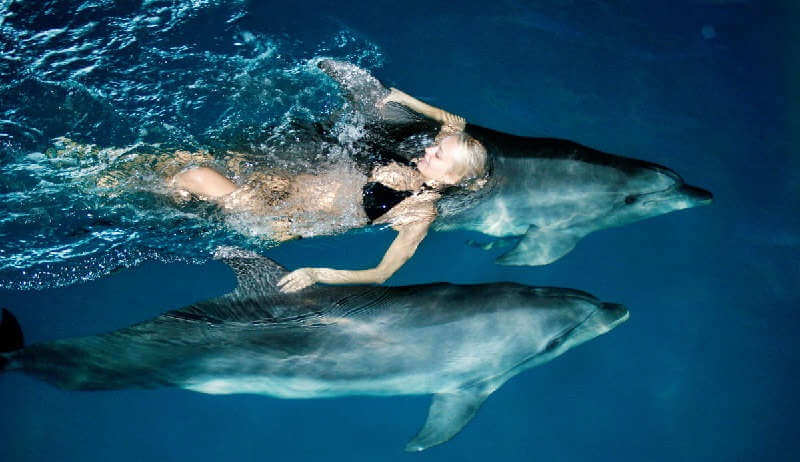 Роды с дельфинами